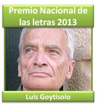 luisgoytisolo